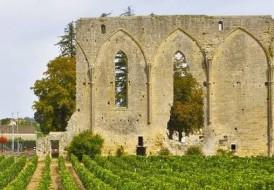 Marché des Producteurs de Pays près du Cloître de Saint Emilion avec le Château Haut de Lerm